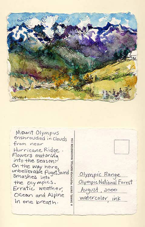 Olympic Range, Olympic National Forest